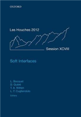 Soft Interfaces: Lecture Notes of the Les Houches Summer School: Volume 98, July 2012