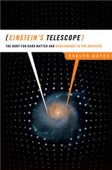 Einstein\'s Telescope: The Hunt for Dark Matter and Dark Energy in the Universe