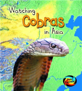 Watching Cobras in Asia