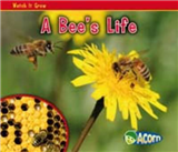 A Bee\'s Life