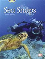 BC NF Green A/1B Sea Snaps