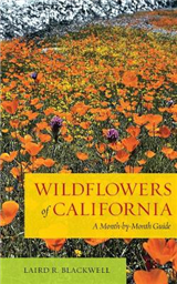 Wildflowers of California: A Month-by-Month Guide