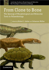 From Clone to Bone: The Synergy of Morphological and Molecular Tools in Palaeobiology