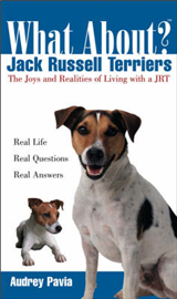 What about Jack Russell Terriers?: The Joys and Realities of Living with a JRT