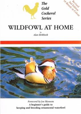 Wildfowl at Home: 2008