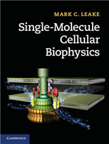 Single-Molecule Cellular Biophysics