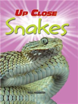 Up Close: Snakes