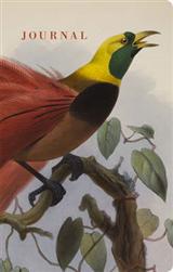 Natural Histories Journal: Bird