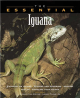 The Essential Iguana
