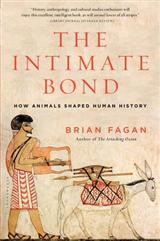 Intimate Bond