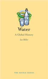 Water: A Global History