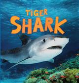 Discover Sharks: Tiger Shark