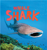 Discover Sharks: Whale Shark