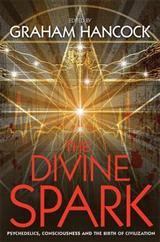 Divine Spark