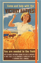 Imperial War Museum Victory Harvest Notebook