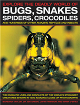 Explore the Deadly World of Bugs, Snakes, Spiders, Crocodiles