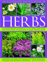 An Illustrated Encyclopedia of Herbs: A Comprehensive A-Z of Herbs and Their Uses