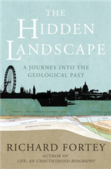 Hidden Landscape