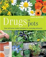 Drugs in Pots