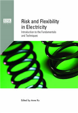 Risk and Flexibility in Electricity