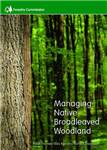 Managing native broadleaved woodland