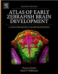 Atlas of Early Zebrafish Brain Development: A Tool for Molecular Neurogenetics
