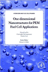 One-dimensional Nanostructures for PEM Fuel Cell Application