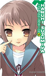 Indignation of Haruhi Suzumiya light novel