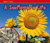 A Sunflower\'s Life