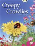 BC NF Green B/1B Creepy Crawlies