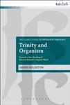 Trinity and Organism: Towards a New Reading of Herman Bavinck\'s Organic Motif