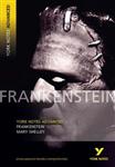 YNA2 Frankenstein