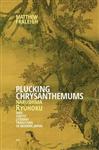 Plucking Chrysanthemums