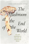 Mushroom at the End of the World