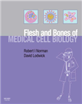 The Flesh and Bones of Medical Cell Biology