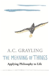 Meaning of Things