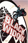 Black Widow Vol. 1: S.h.i.e.l.d.\'s Most Wanted