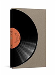 A Record Of My Vinyl: A Collector\'s Catalog