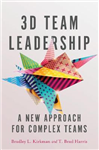 3D Team Leadership