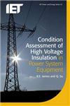 Condition Assessment of High Voltage Insulation in Power Sys