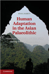 Human Adaptation in the Asian Palaeolithic: Hominin Dispersal and Behaviour during the Late Quaternary