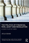 Politics of Financial Risk, Audit and Regulation