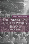 The Industrial Turn in World History