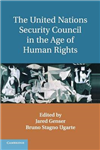 United Nations Security Council in the Age of Human Rights