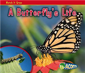 A Butterfly\'s Life