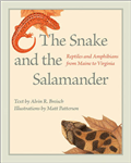 Snake and the Salamander