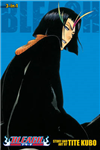 Bleach (3-in-1 Edition), Vol. 13