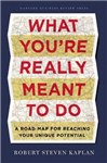 What You\'re Really Meant to Do: A Road Map for Reaching Your Unique Potential