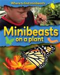 Minibeasts on a Plant