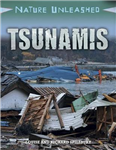 Nature Unleashed: Tsunamis